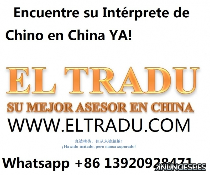 interprete Chino Español En Qingdao Jinan Shanghai china